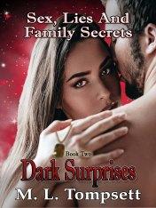 2nd bk Dark Suprises small file